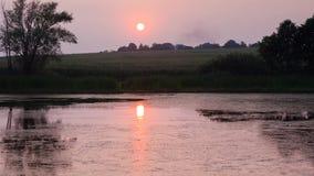 晚上一个小湖和一个领域的夏天视图与落日和它的反射在水,自然照片中 库存照片