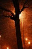 晚上下雪 图库摄影