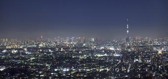晚上东京Vew与天空结构树的 免版税图库摄影