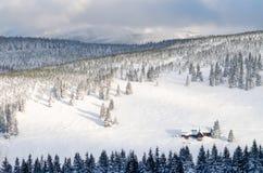 晚上冬天多雪的山风景背景 寒假概念 免版税库存图片