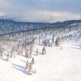 晚上冬天多雪的山风景背景 寒假概念 库存图片