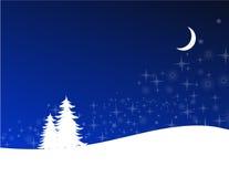 晚上冬天 免版税库存图片