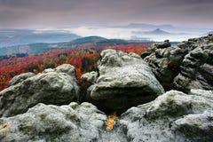晚上在一个美丽的岩石公园漂泊萨克森瑞士 砂岩峰顶和小山从有雾的背景,雾增加了 免版税图库摄影