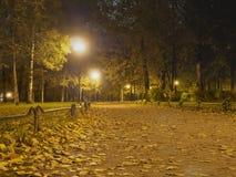 晚上在公园 在街灯的烧伤明亮的电灯泡 库存图片
