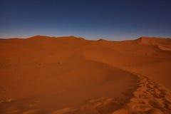 晚上在沙漠 库存照片