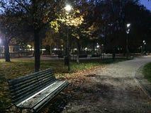 晚上在秋天公园 免版税库存照片