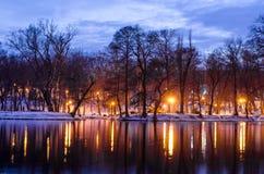 晚上场面在公园 反射在水中的树在黎明 库存图片