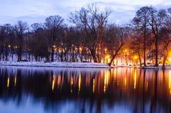 晚上场面在公园 反射在水中的树在黎明 免版税库存照片