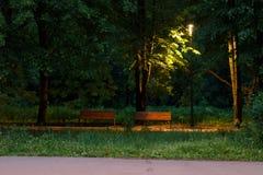 晚上时间的公园 免版税库存图片