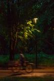 晚上时间的公园 图库摄影