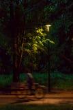 晚上时间的公园 免版税库存照片