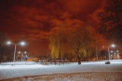 晚上横向在冬天城市 免版税库存图片