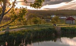晚上池塘2 免版税库存图片