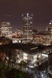 晚上波特兰地平线 免版税库存照片