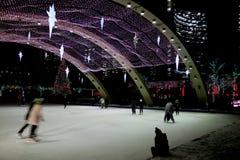 晚上滑冰 库存图片