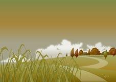 晚上秋天麦子 免版税库存照片