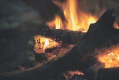 晚上篝火特写镜头在俄罗斯的密集的森林里 免版税库存照片