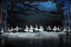 晚上芭蕾的天鹅湖天鹅湖 图库摄影