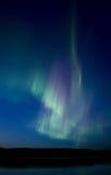 晚上被射击的北极光 库存图片