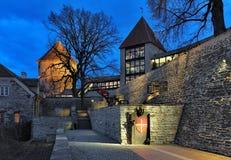 晚上观点的有Dannebrog纪念碑的丹麦国王的Garden在塔林 库存照片