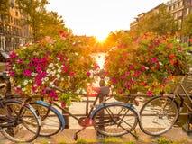 晚上阿姆斯特丹城市场面  免版税图库摄影