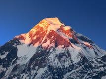 晚上登上道拉吉里峰,喜马拉雅山,尼泊尔日落视图  免版税库存图片
