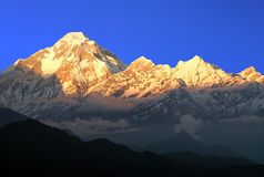 晚上登上道拉吉里峰,喜马拉雅山,尼泊尔日落视图  免版税图库摄影