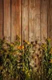 晚夏自然草甸花和植物葡萄酒木背景的 免版税库存图片