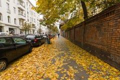 晚秋天在柏林 免版税库存照片