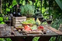 晚餐的准备用开胃菜和酒在庭院里 免版税库存照片