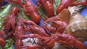 晚餐的煮沸的小龙虾 影视素材