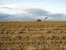 晚麦子收获 图库摄影