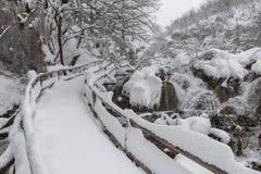 普利特维采湖群国家公园,积雪的自然 冻普利特维采湖群国家公园自然风景  图库摄影
