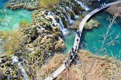 普利特维采湖群国家公园,克罗地亚的深颜色 免版税图库摄影