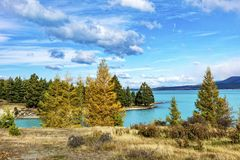 普卡基湖 库存图片