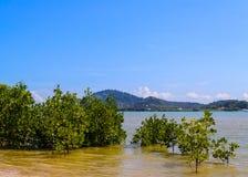 普吉岛东海岸  免版税图库摄影