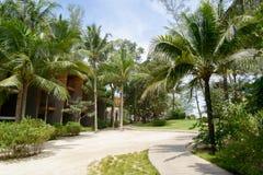 普吉岛,泰国- 2013年8月04日:新生手段庭院  库存照片
