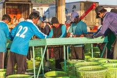 普吉岛- 2月23 :缅甸人民在鱼市上工作 库存图片
