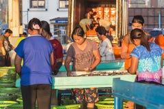 普吉岛- 2月23 :缅甸人民在鱼市上工作 库存照片