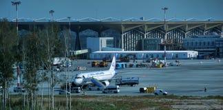 普尔科沃机场 库存图片