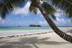 普拉兰岛热带天堂海岛在塞舌尔群岛 库存图片