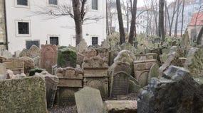 普拉哈,犹太Cementary 库存照片