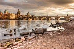 普拉哈Karluv最,查尔斯桥梁日落 布拉格捷克,太阳集合,伏尔塔瓦河河 库存图片