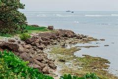 普拉塔港,多米尼加共和国的美好的本质 免版税库存照片
