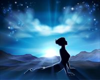 普拉提或瑜伽姿势剪影妇女背景 免版税库存图片