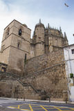 普拉森西亚,卡塞里斯,西班牙大教堂  库存照片