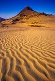 普斯赫卡尔,印度- 11月17 :在每年家畜fai的骆驼 图库摄影