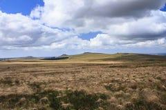 普林斯敦, Dartmoor,英国 库存照片