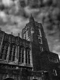 普林斯顿大学图书馆 库存照片