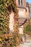 普林斯顿大学在秋天 库存图片